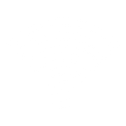 Internet & Wi Fi Systems icon